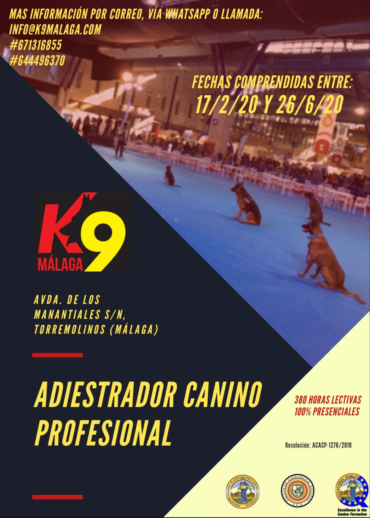 formacion-adiestrador-canino-feb-2020-k9-malaga