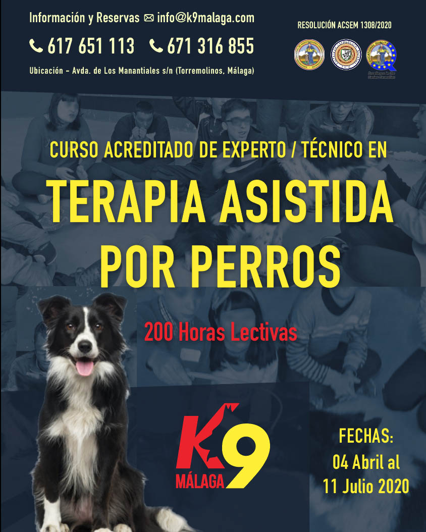 Curso Técnico / Experto en Terapia Asistida por Perros