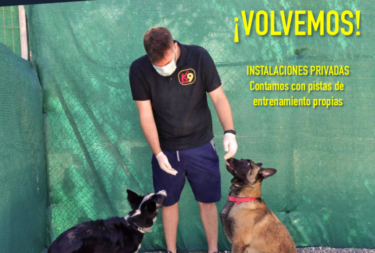 volvemos-adiestramiento-canino-k9-malaga-mayo-2020_1