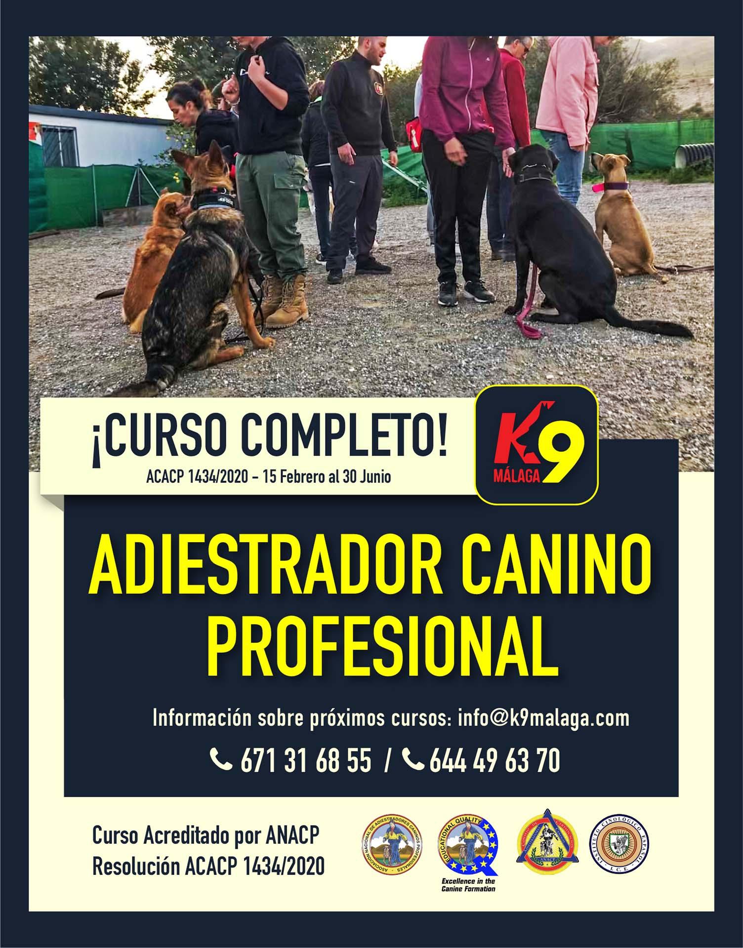 Curso Adiestrador Canino Febrero 2021 - Malaga España