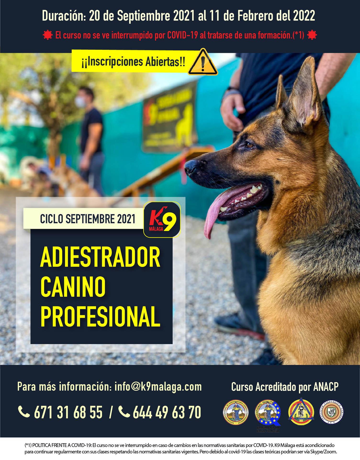 CURSO ADIESTRADOR CANINO PROFESIONAL - 20 de Septiembre 2021 al 11 Febrero 2022.