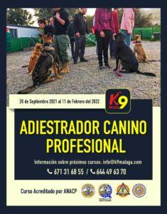 curso-adiestrador-banners-feedSeptiembre 2021: Curso Adiestrador Canino Profesionalredes-02-sept-2020 copia