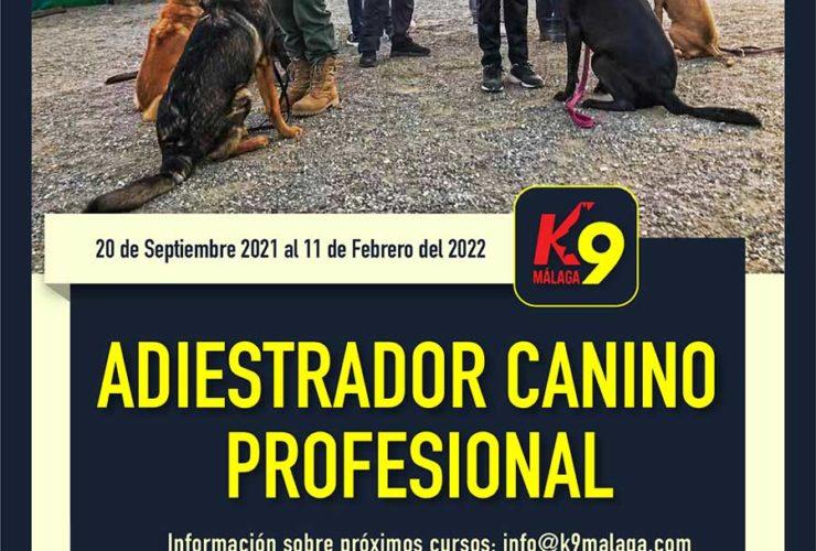 Septiembre 2021: Curso Adiestrador Canino Profesional