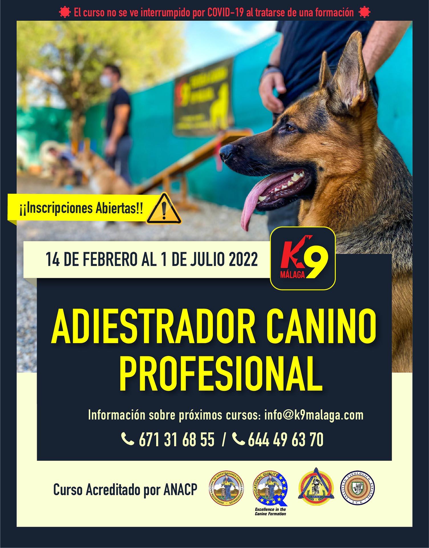 Curso Formación Adiestrador Canino Profesional y Técnico en Modificación de Conductas Febrero 2022 a Julio 2022