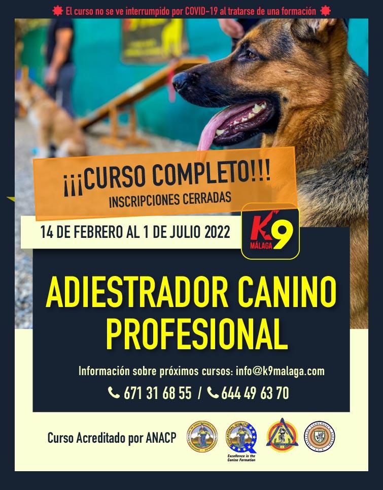 CURSO ADIESTRADOR CANINO PROFESIONAL